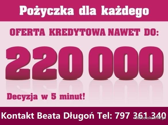 Kredyt Gotówkowy do 220 000 w 1 Dzień